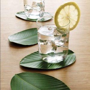 BaliHai Haliconia Leaf Coasters